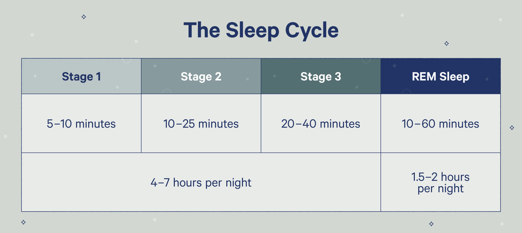 stages of the sleep cycle chart