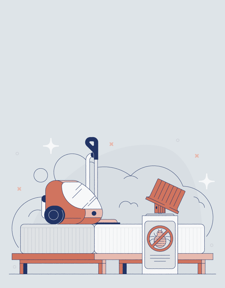 how to get bed bugs out of a mattress illustration