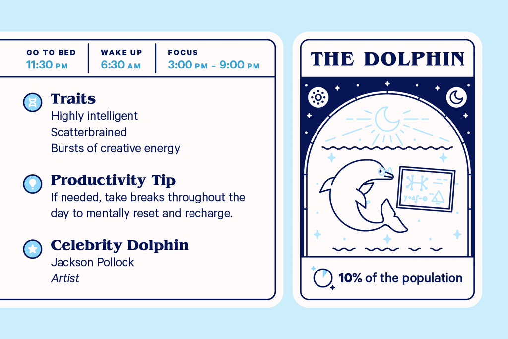 Characteristics of the dolphin chronotype.
